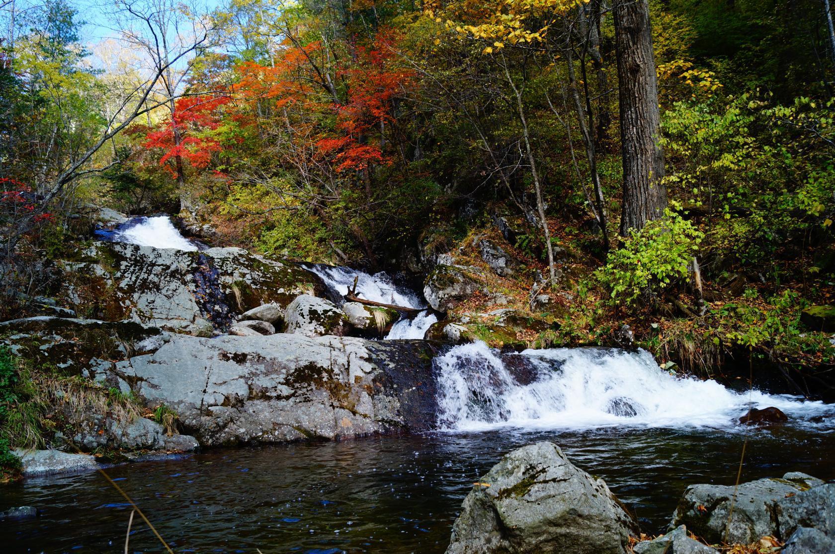 приложение фото ворошиловские водопады были раздеты нижнего