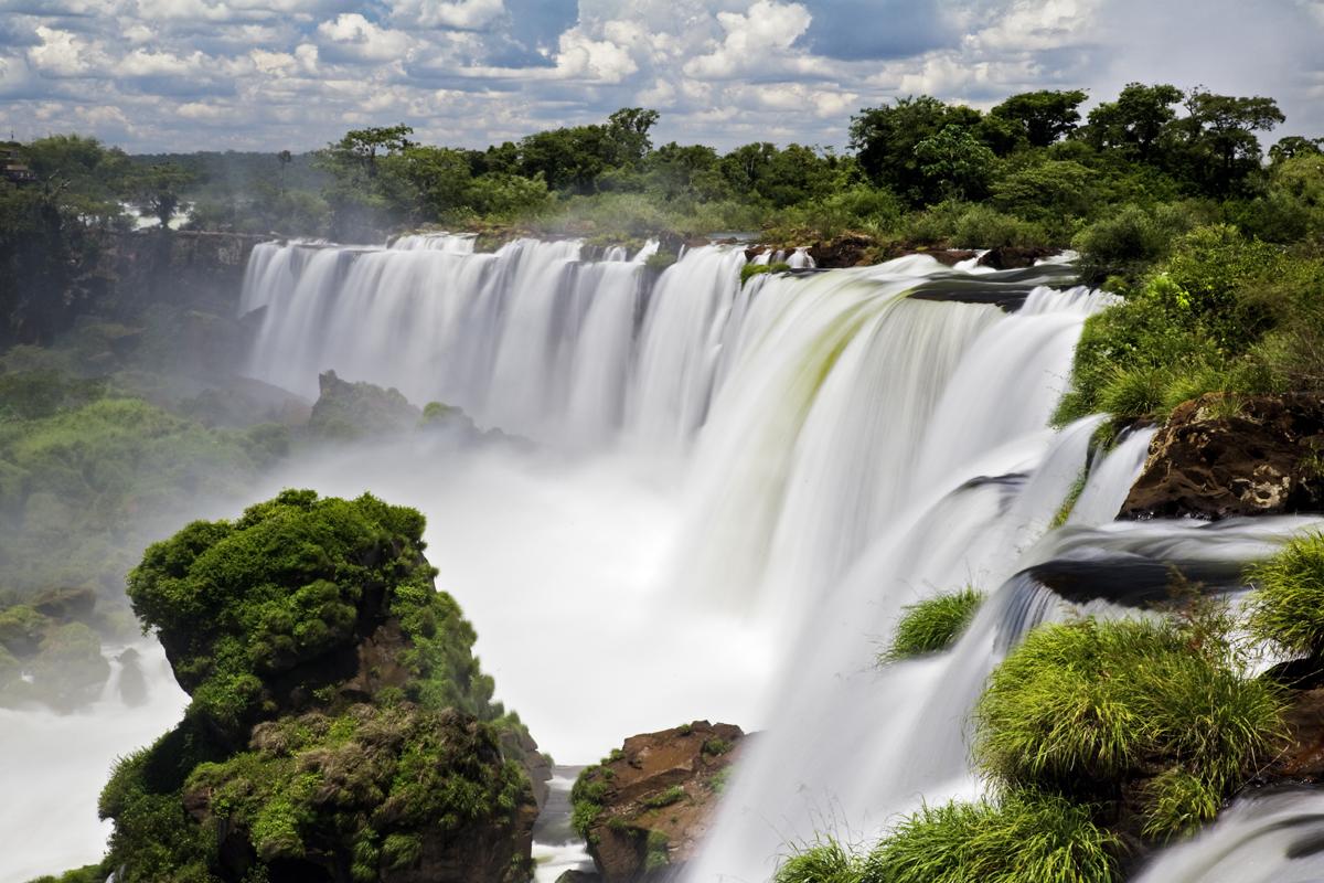 Водопады Игуасу джунгли
