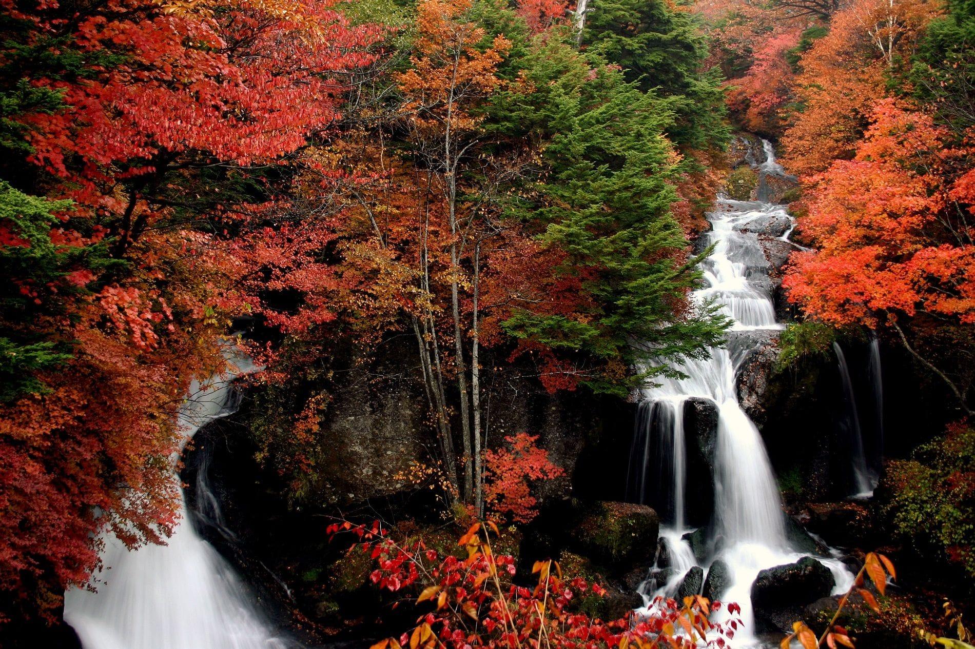 Водопад Рюдзу
