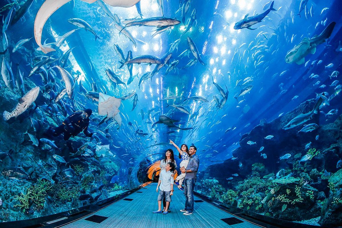 Дубай Молл аквариум